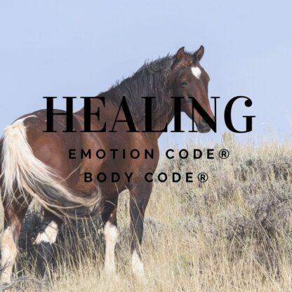 emotion code body code