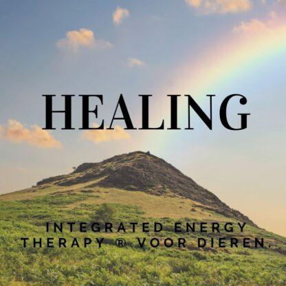 Integrated Energy Therapy ® voor dieren.