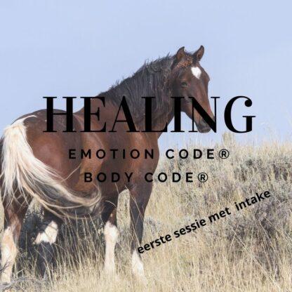 emotion code paard